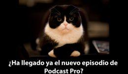 feed en el podcast