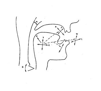 parametrización de la voz humana
